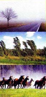 Картинки на k явления природы