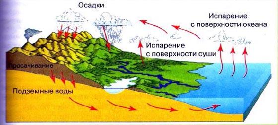 Вода на Земле Круговорот воды Природоведение Реферат доклад  Рис 113 Круговорот воды